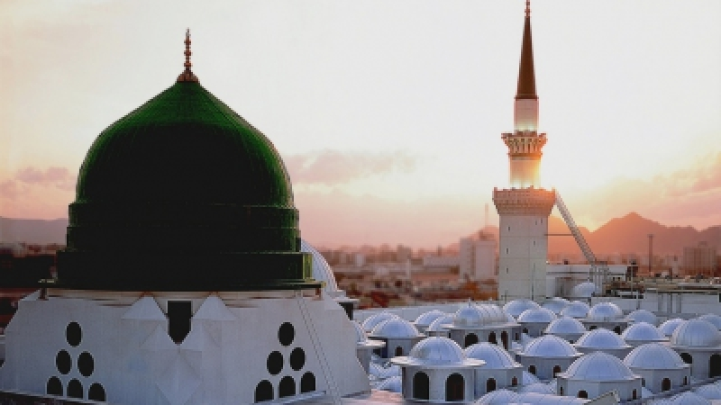 Green Dome S